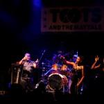 toots 15 irie