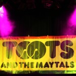 toots 2 irie