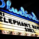 kit chalberg-elephant revival-bluebird 314