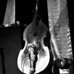 kit chalberg-elephant revival-bluebird 318