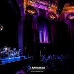 Winwood2012-11-20-29-8805
