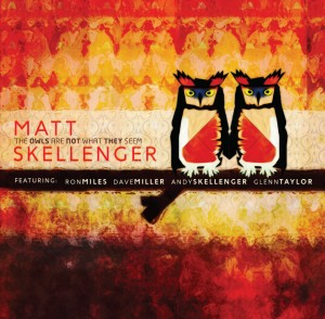 Matt Skellenger-Owls-Cover
