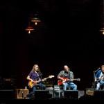 The Eagles - TAD 2013-2572