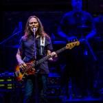 The Eagles - TAD 2013-2647