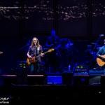 The Eagles - TAD 2013-2648
