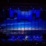 The Eagles - TAD 2013-2653