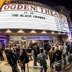Black Crowes 2013-11-13-01-2295
