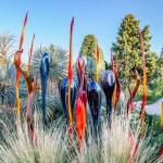 Chihuly Exhibit 2014-08-11-09-6477