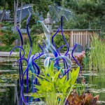 Chihuly Exhibit 2014-08-11-22-6401