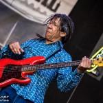 Telluride Blues & Brews 2014-5536