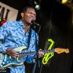 Telluride Blues & Brews 2014-5571