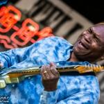 Telluride Blues & Brews 2014-5619