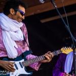 Telluride Blues & Brews 2014-6206