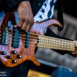 Telluride Blues & Brews 2014-6401