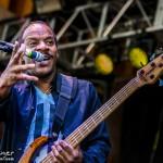 Telluride Blues & Brews 2014-6490