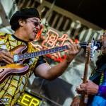 Telluride Blues & Brews 2014-6629