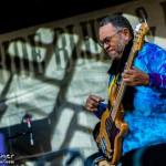 Telluride Blues & Brews 2014-6650