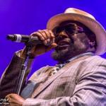 Telluride Blues & Brews 2014-6717
