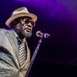 Telluride Blues & Brews 2014-6792