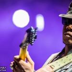 Telluride Blues & Brews 2014-6886