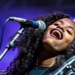 Telluride Blues & Brews 2014-6917