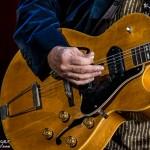 Tom Petty 0517-8743
