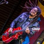 Blues & Brews 2017-3459